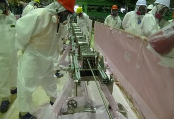 Fukushima Daiichi Reactor 4 SFP Unused Assembly Test - Fuel Assembly Investigation