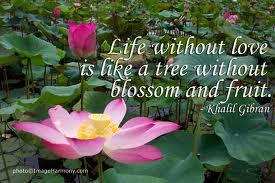 Blog_Khalil Gibran_ Life without love