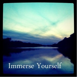 Blog_Immerse Yourself