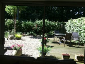 The view of the garden from the sitting room