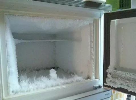 freezer congelador nevera