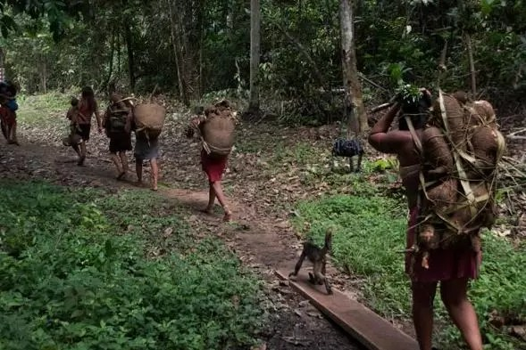 indigenas indios