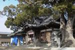 踞尾八幡神社