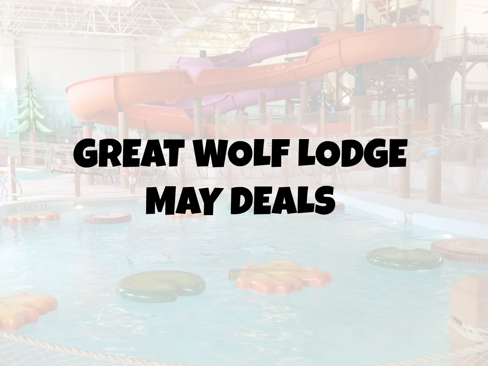 May Great Wolf Lodge Deals (This One Is Correct)