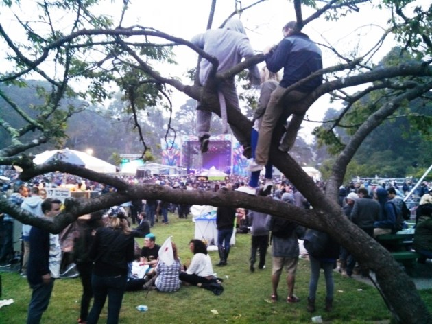 Boys in the trees - never an issue at Coachella. (photo by Brad Auerbach)