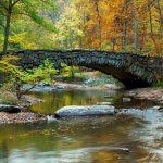 rock-creek-park-washington-dc
