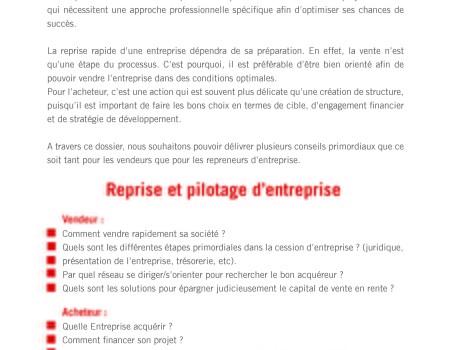 Dossier- reprrise et pilotage d'entreprise - Entreprendre _Page_2