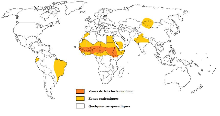 meningite-vaccin