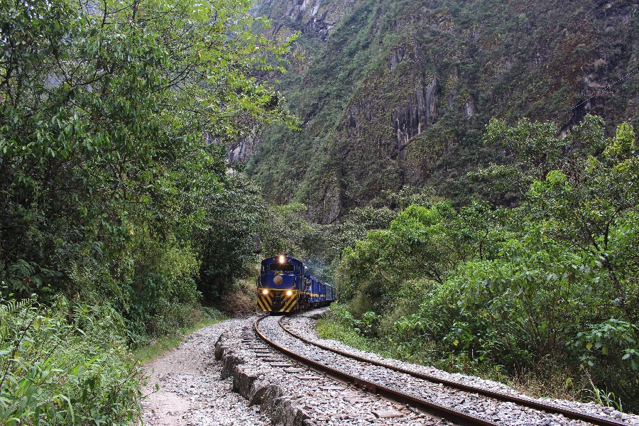 train-macho-picchu