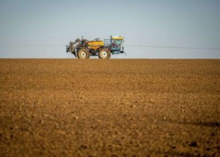 "O ""alarmante"" uso de agrotóxicos no Brasil atinge 70% dos alimentos"