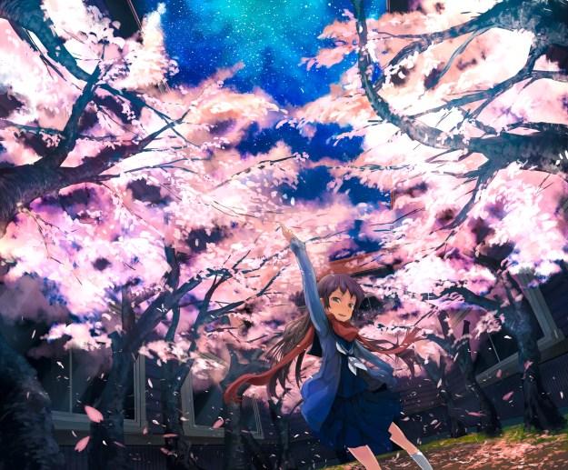 Starry Sakura Sky