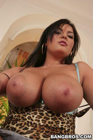 huge cartoon tits