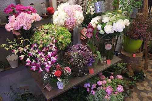 fleurs-marseille-1-e1470249873282