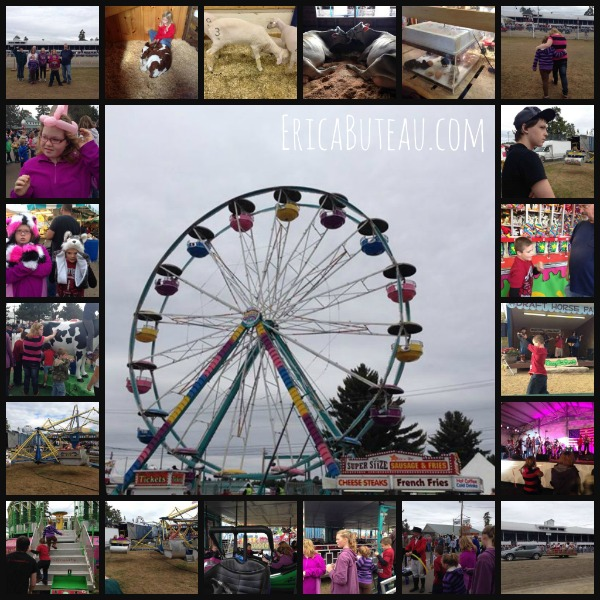 fair collage