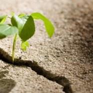 Come smettere di abbandonare se stessi e imparare a fluire con la Vita