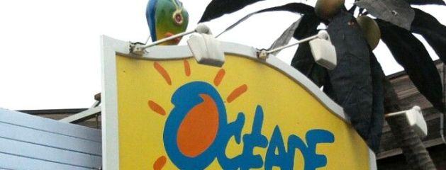 perroquets mascotte Du parc aquatique Océade