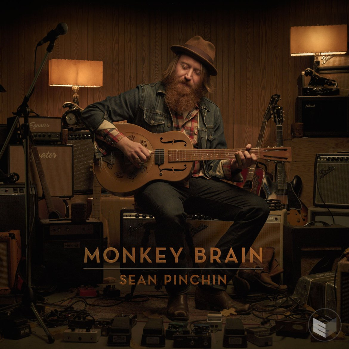 SEAN PINCHIN'S MONKEY BRAIN COVER