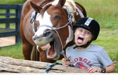horselaughing