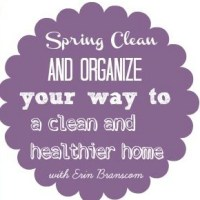 Join me on a Spring Cleaning Challenge!