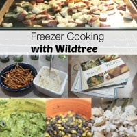 Freezer Cooking for the Month #Wildtree