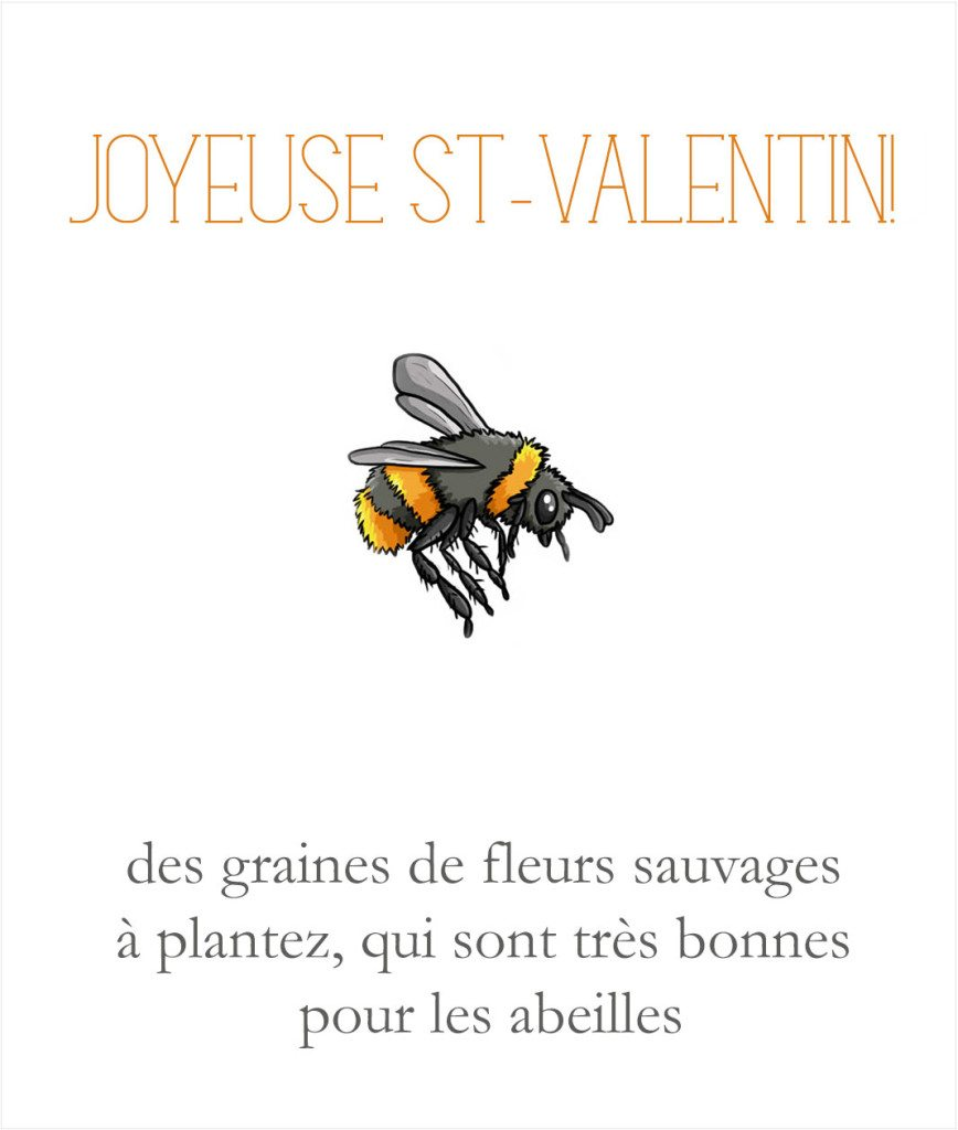 valentine's-day-card-2015-FR