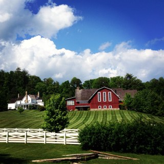 Biscuits and Blackberry Farm