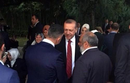 sedat-peker-erdogan