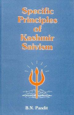 Основы кашмирского шиваизма