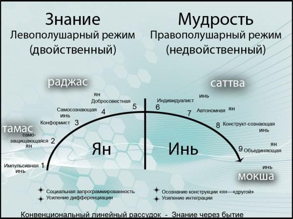 Рис. 2. Диалектическое отражение модели развития Сюзанны Кук-Гройтер