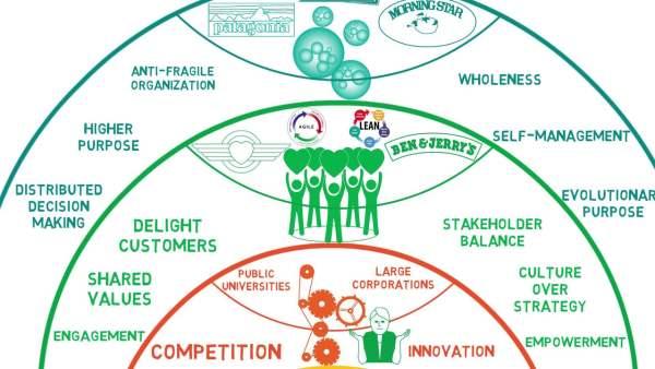 Изумрудные («бирюзовые») организации: как они отличаются от зелёных и оранжевых