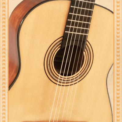 guitar-artista-closeup