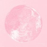 Holly el disco de algodón rosa de Crystal Shipsss (2016)