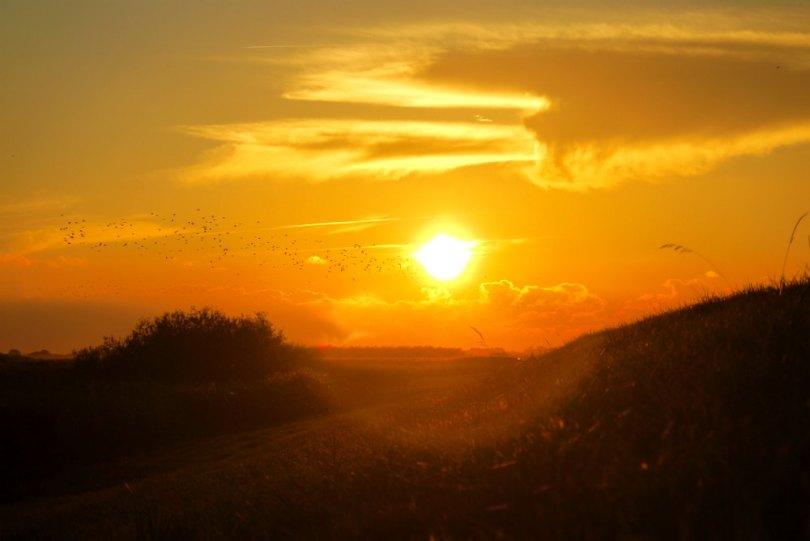 sort-sol-sonnenuntergang