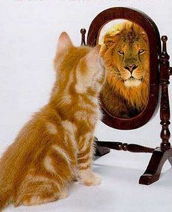 Conócete a ti mismo