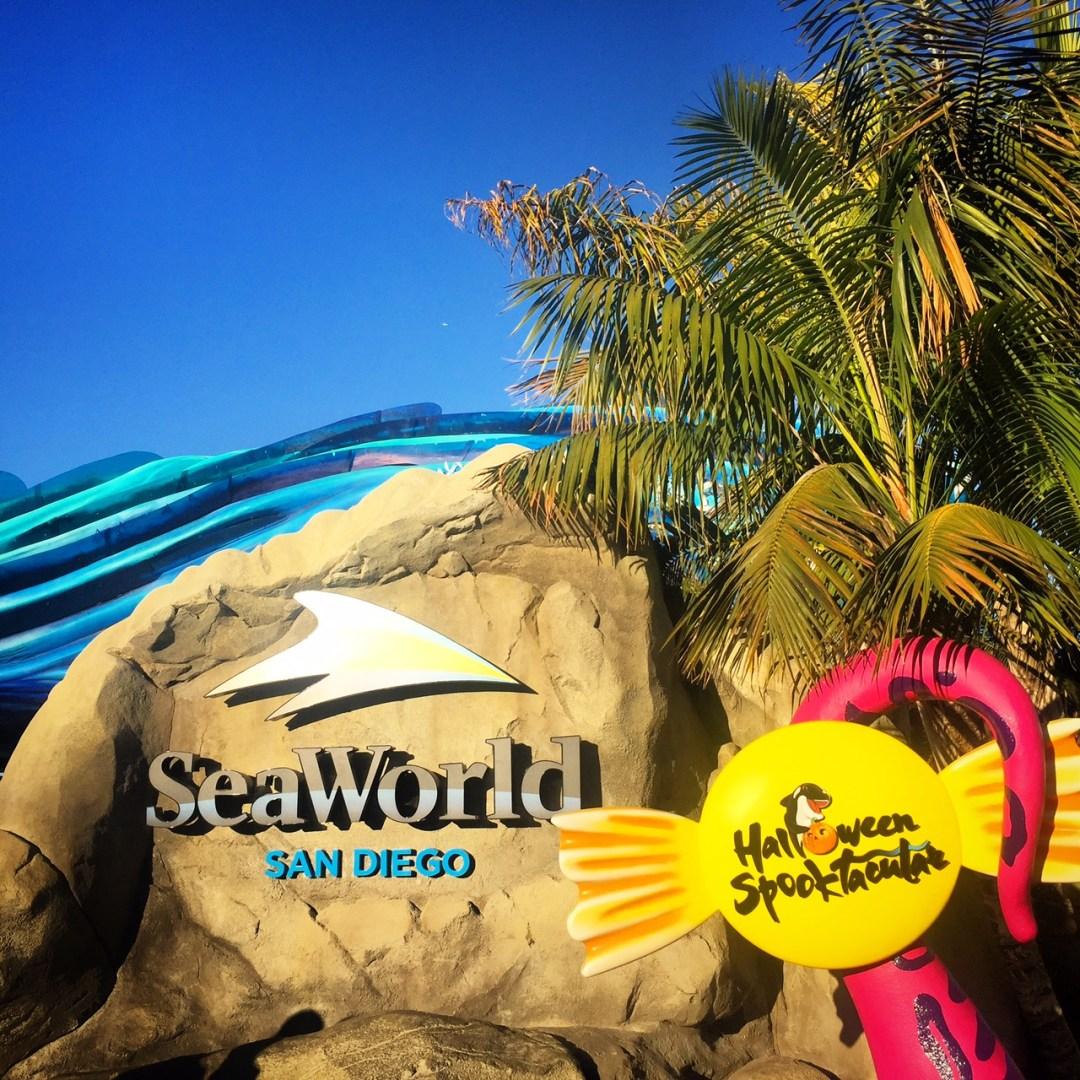 San Diego Family Vacation : SeaWorld