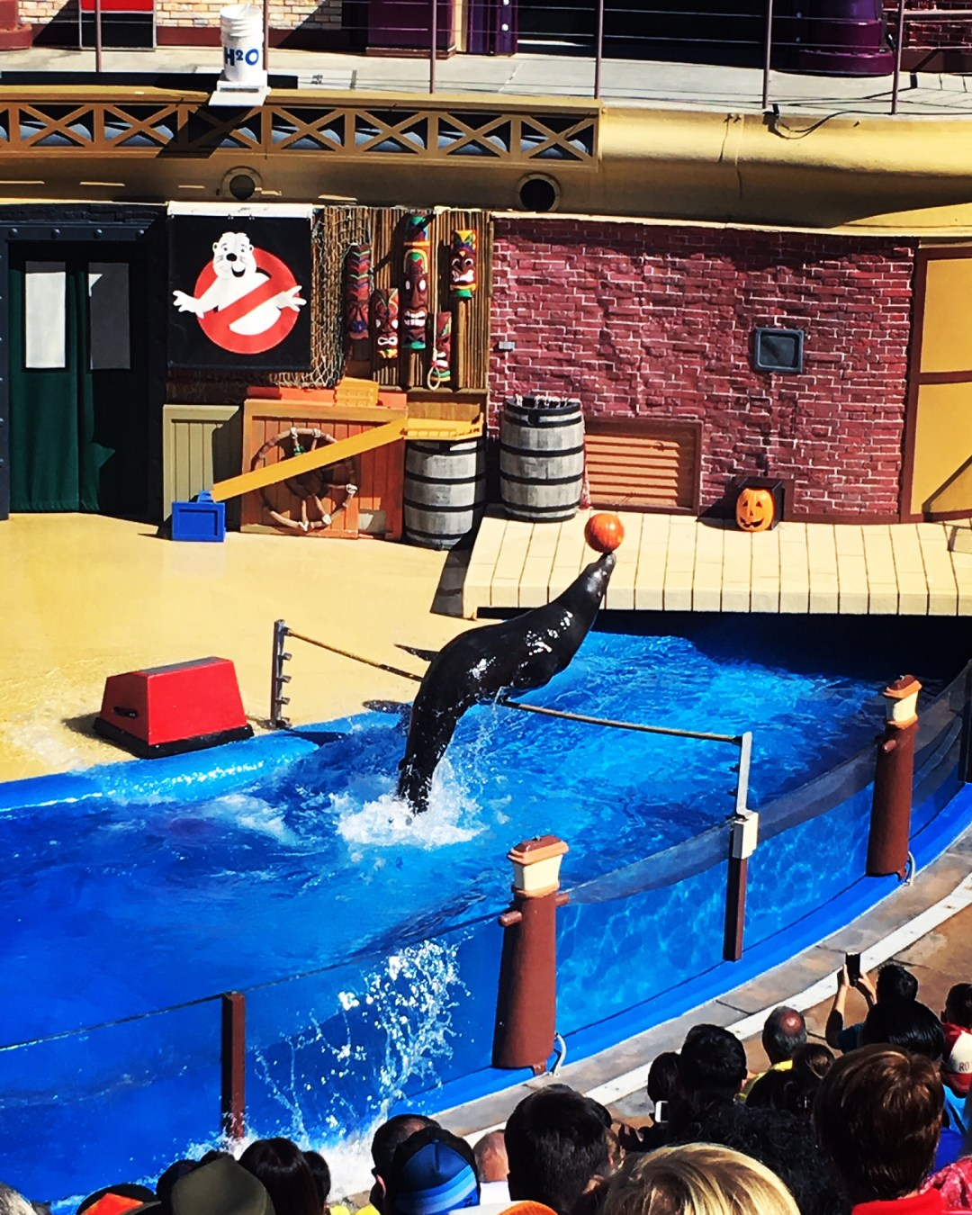 Our Day at SeaWorld San Diego