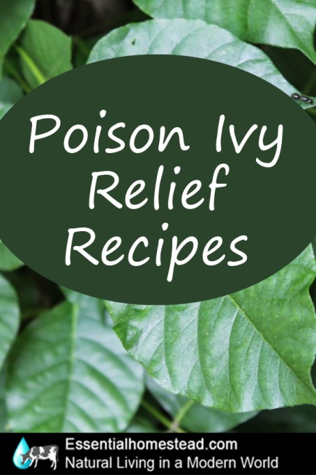 poison ivy home remedies that work