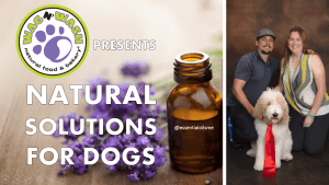 wag-n-wash-natural-solutions-class-10-19-16