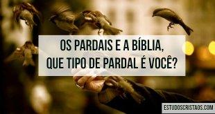 biblia-pardais-jesus