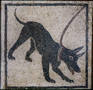 Mosaic of a guard dog. Limestone. MANN 11066. ©The Superintendence for the Archaeological Heritage of Naples (SAHN).
