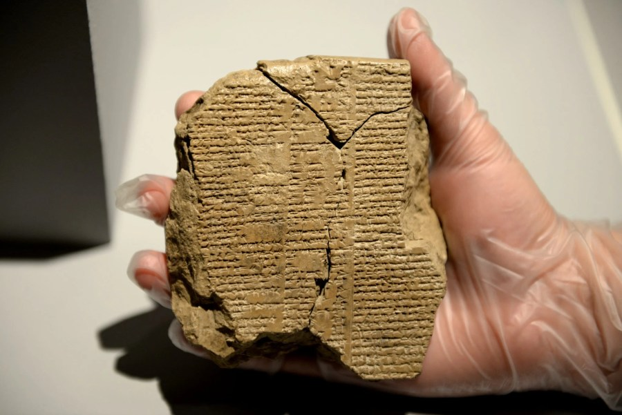 Obverse of the newly discovered tablet V of the epic of Gilgamesh. The Sulaymaniyah Museum, Iraq. Photo © Osama S.M. Amin.