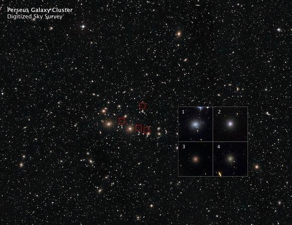 Aglomerado galáctico de Perseus. Crédito: NASA, ESA, and Z. Levay (STScI)