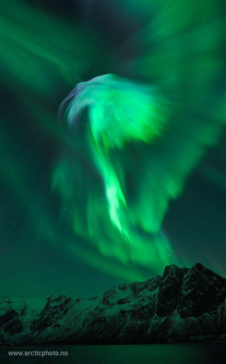 Aurora da Águia sobre a Noruega por Bjørn Jørgensen