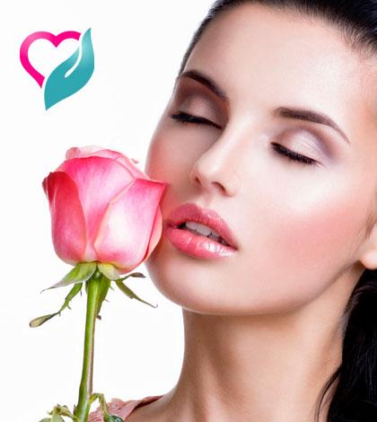 rose petals beauty