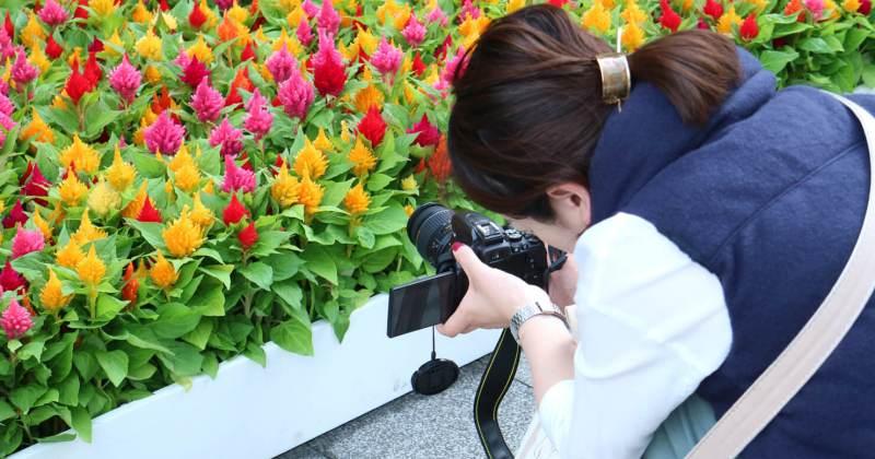 10/7(土)たのしいカメラ学校2017 デジタル一眼講座/初級コース第3回・中級コース第2回を開催しました。
