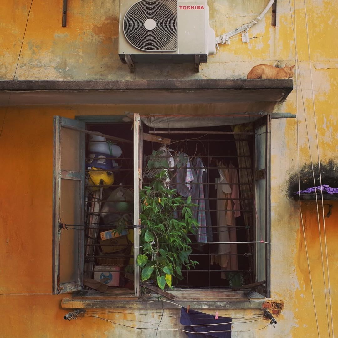 保護色 a protective color #saigon #gr #ricoh