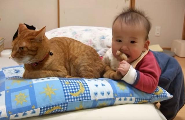 尻尾を噛む赤ちゃん