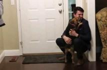 喜びを爆発させる犬