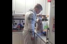 ラブラブすぎるご主人さまと猫