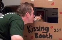 キスブースの猫